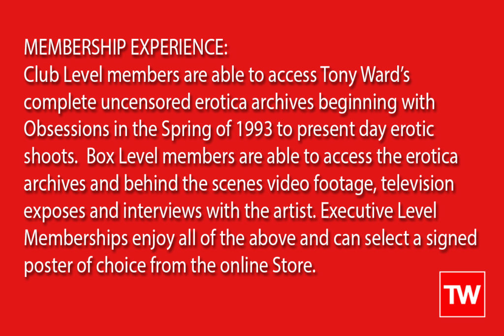 Tony_Ward_Erotica_membership_access_club_box_executive_levels_nudes_porn_harcore_art