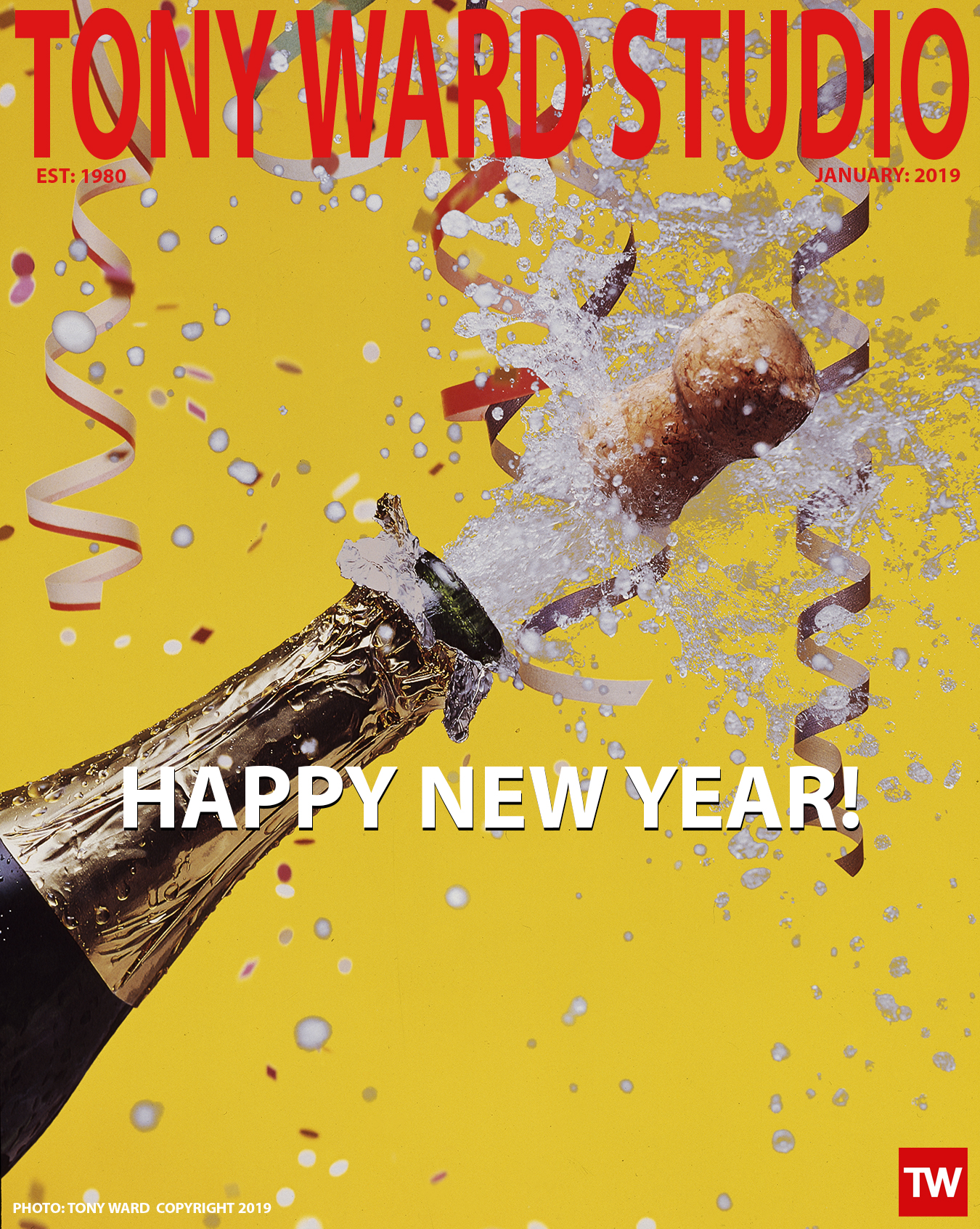 Tony_Ward_Studio_Happy_New_Year_2019_champaign_