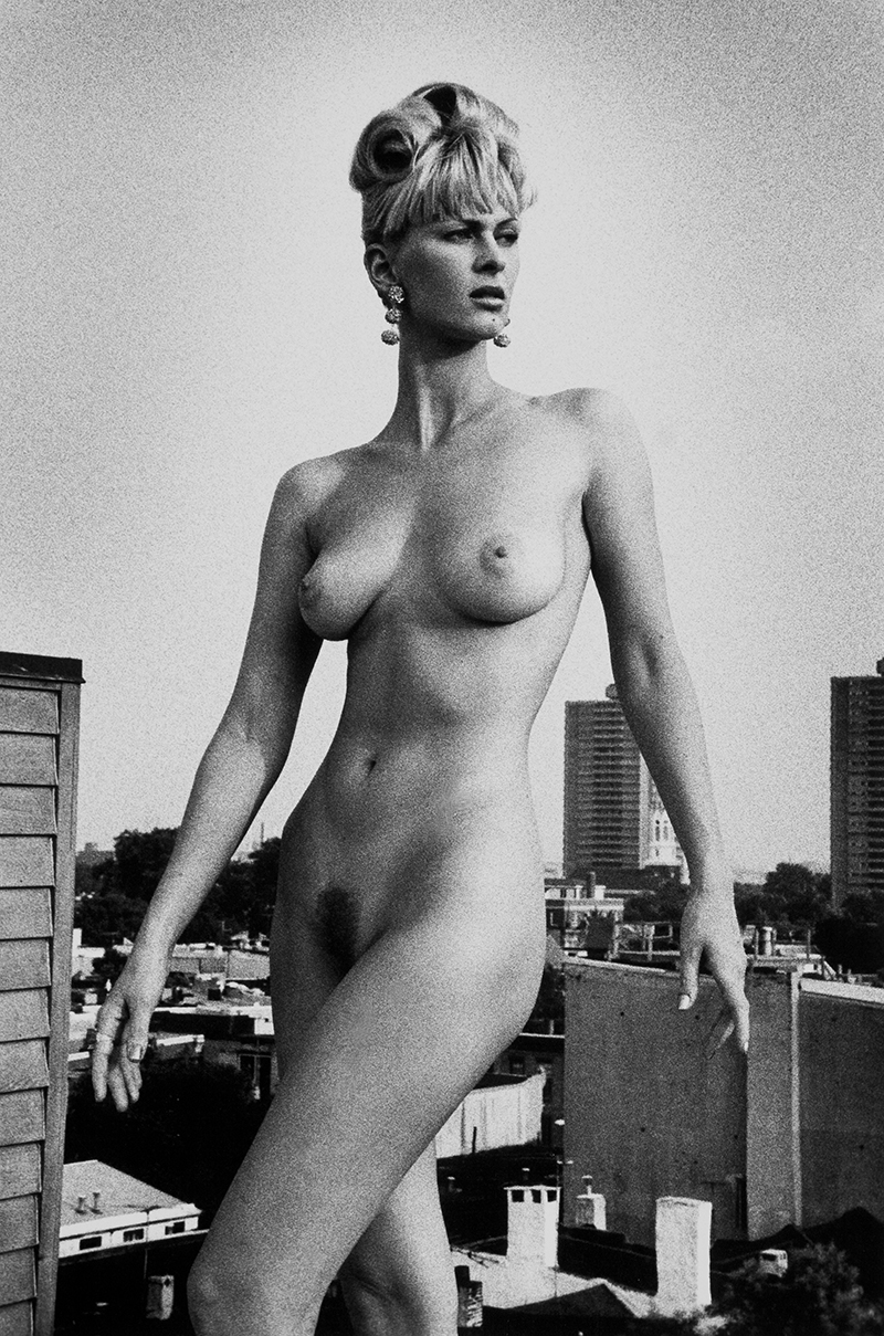 Tony_Ward_erotica_nude_50ft_woman_blond_portfolio_classics