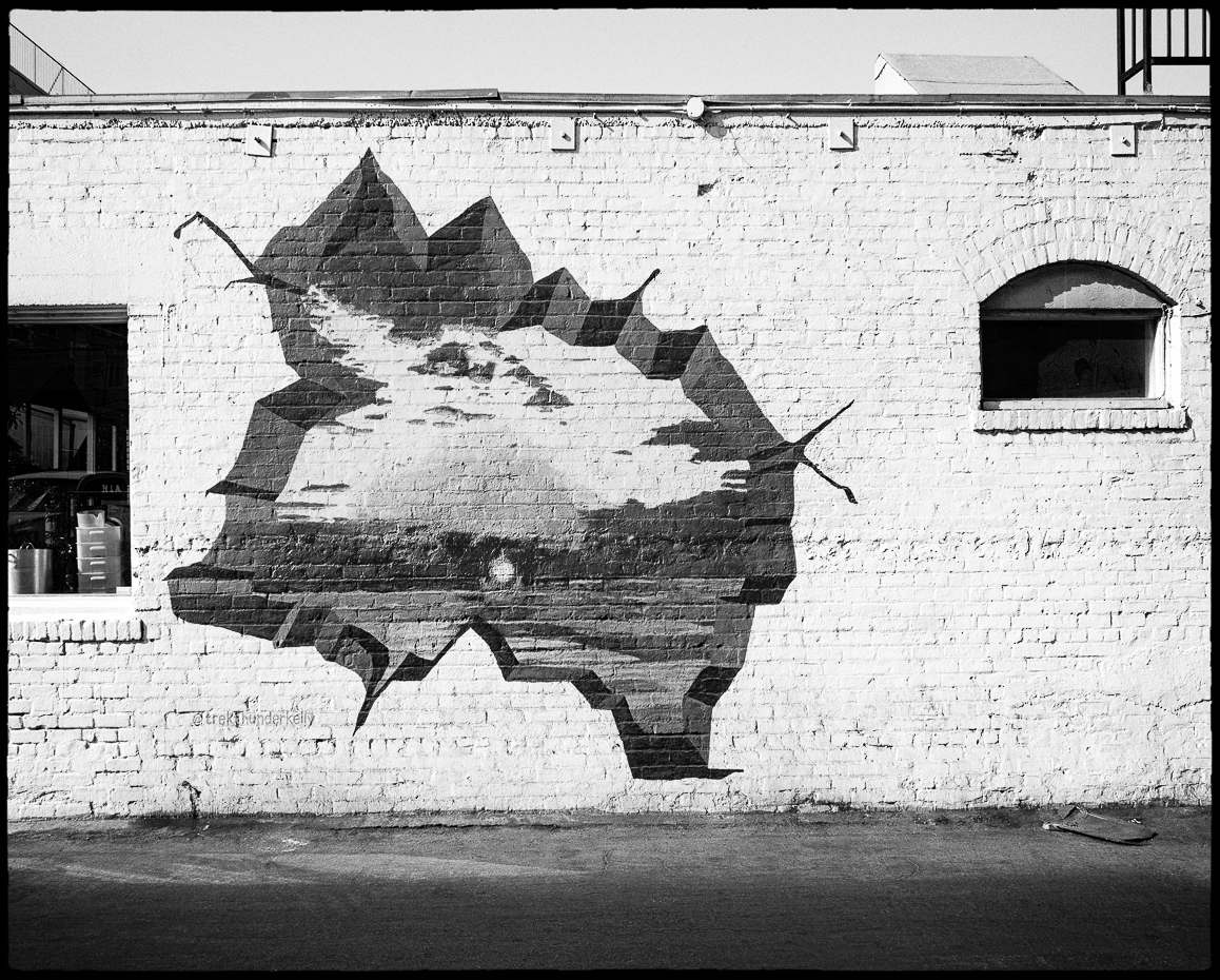 Ed_Simmons_Venice_Beach_Trashed_Tony_Ward_Studio_exclusive_documentary_wall_art