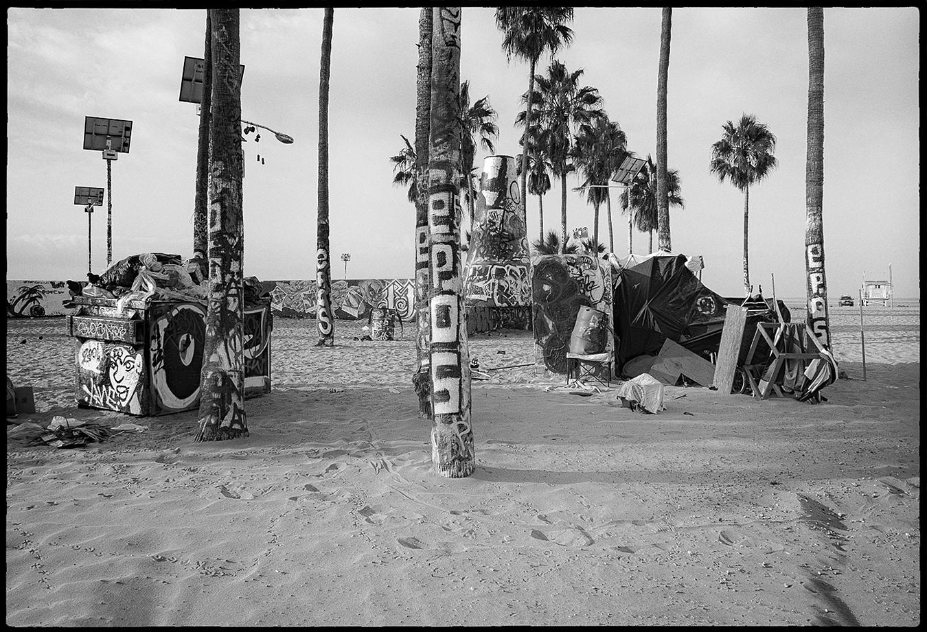 Ed_Simmons_street_art_venice_Beach_California-Palm_Trees